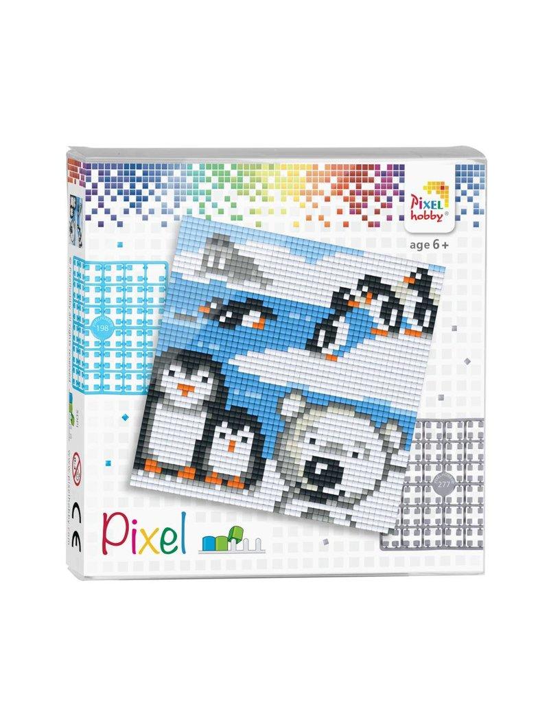 Pixel set  Pooldieren