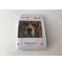 Pixel Hobby Pixel Classic set - Beagle close-up