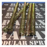 Rapax RMS 2+ Joule spring (SRS/SSG/VSR)