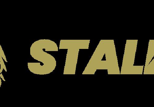 Stalker Airsoft