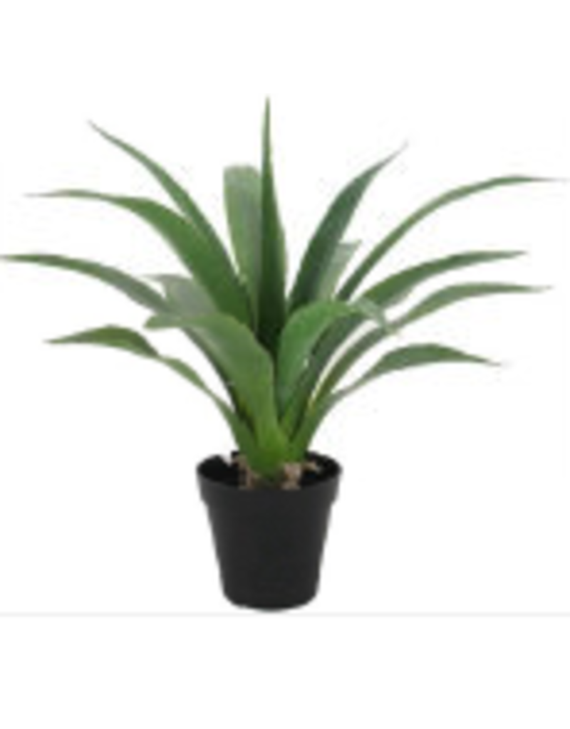 Store Development ARTIFICIAL PLANT, X-SMALL, YUCCA, H 430MM