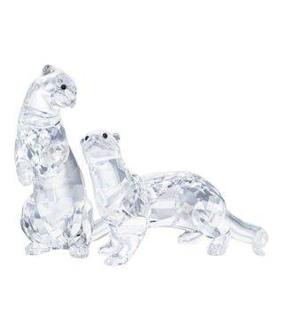 Swarovski Swarovski Otters 5385060
