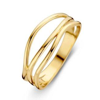 Huiscollectie Ring geelgoud RM106485-56