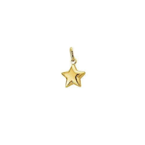 Huiscollectie Gouden Bedel ster 4018515