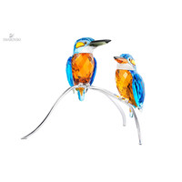 IJsvogels
