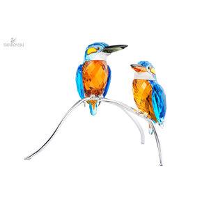Swarovski IJsvogels