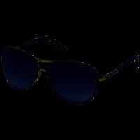 Swarovski Zonnebril 5219658
