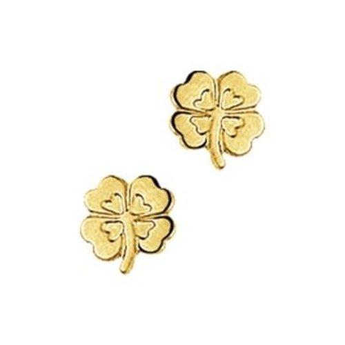 Huiscollectie Gouden oorknoppen 4018287