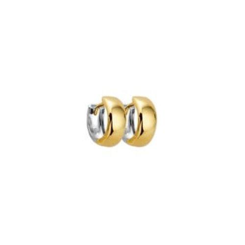 Huiscollectie Gouden creolen 4207916