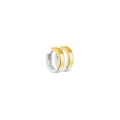 Huiscollectie vDam Gouden Bicolor Creolen 4207920