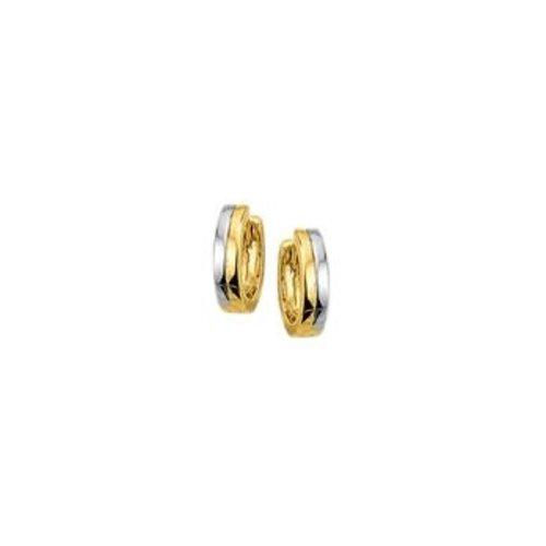 Huiscollectie vDam Gouden Creolen Bicolor 4207926