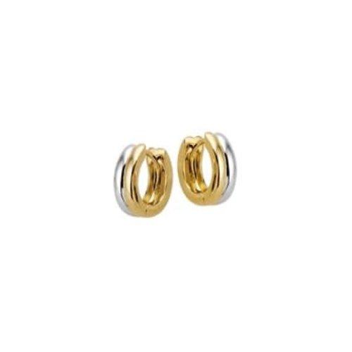 Huiscollectie vDam Gouden Creolen Bicolor 4207927
