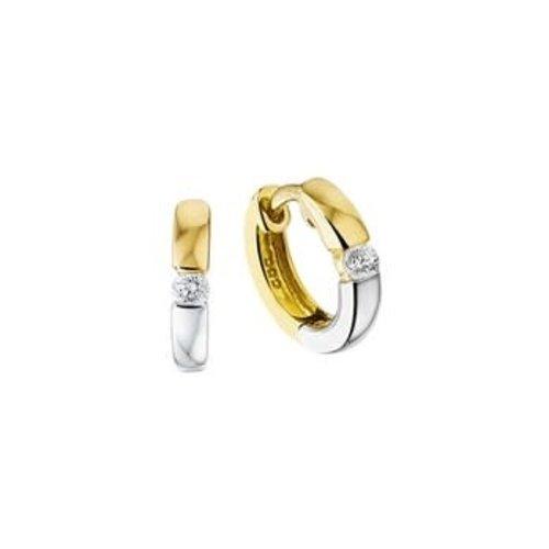 Huiscollectie vDam Gouden Creolen 4207930