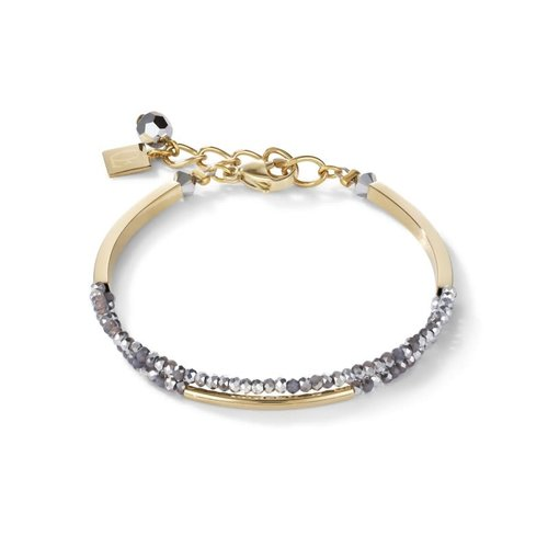 Coeur de Lion Coeurdelion armband 4998/30-1617