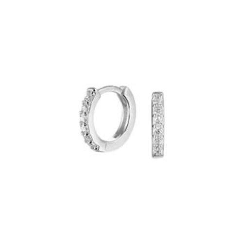 Huiscollectie vDam zilveren creolen 1332716