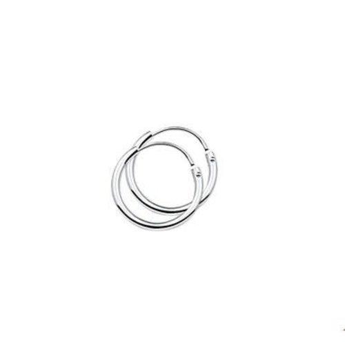 Huiscollectie vDam zilveren oorsieraden 1322804