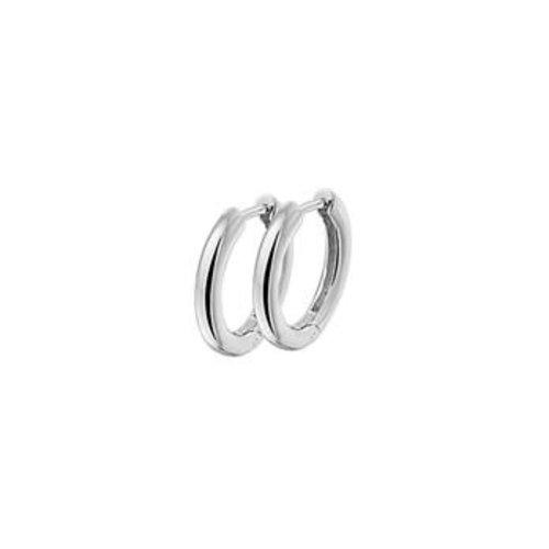 Huiscollectie vDam zilveren oorsieraden 1322895