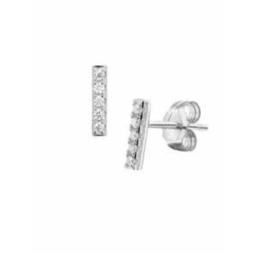 Huiscollectie Zilveren oorsieraden 1324562