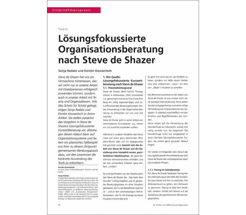 Lösungsfokussierte Organisationsberatung nach Steve de Shazer
