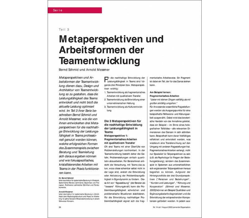 Metaperspektiven und Arbeitsformen der Teamentwicklung