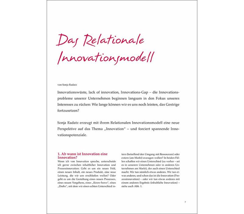 Das Relationale Innovationsmodell