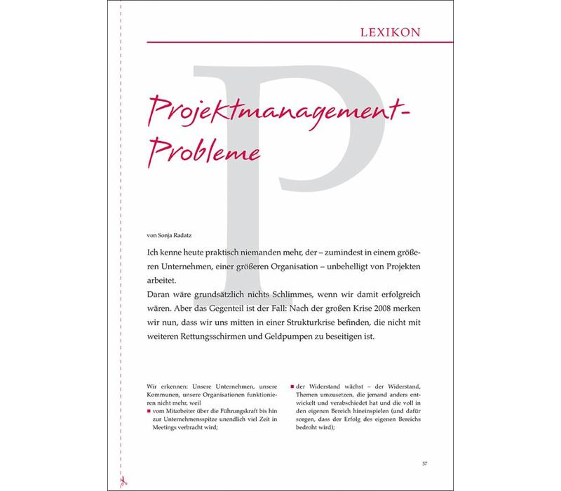 Projektmanagement- Probleme