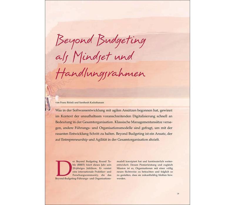 Beyond Budgeting als Mindset und Handlungsrahmen