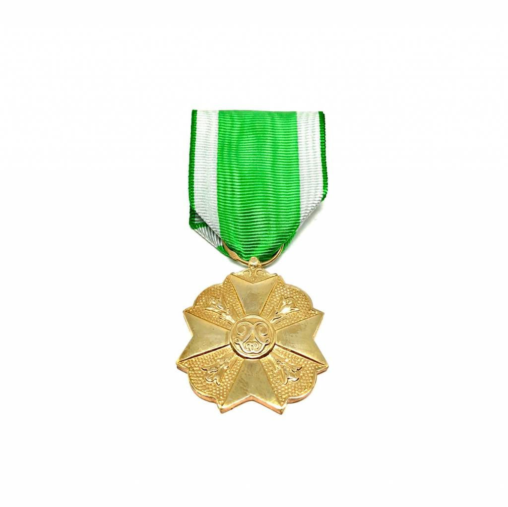 Médaille civile pompiers première classe