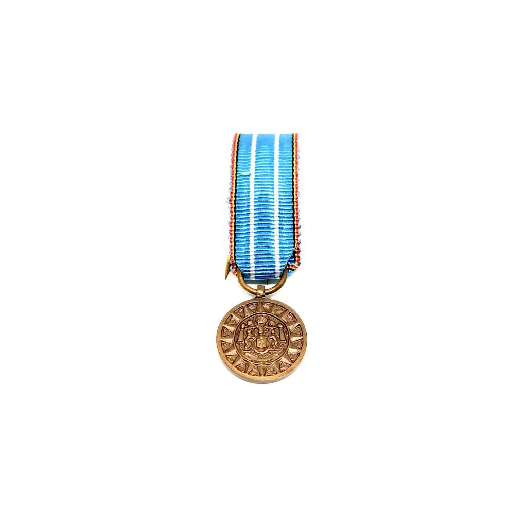 Commemorative medal for Foreign Operational Theatres
