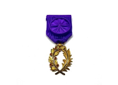 Order of Academic Palms (Palmes Académiques)