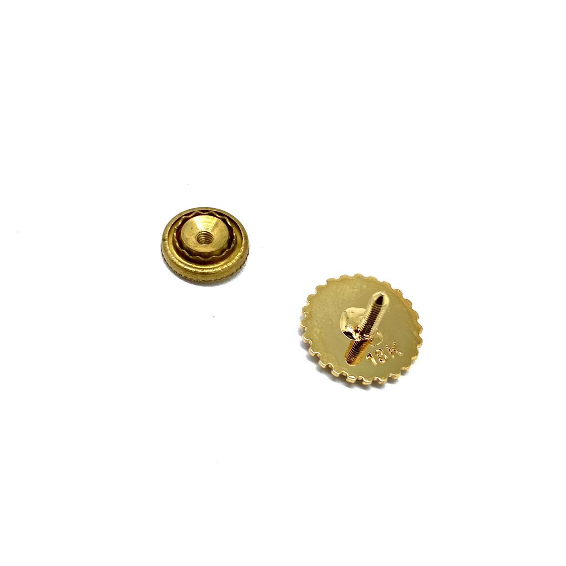 Pin Rotary Past President goud + briljant 0.02 ct
