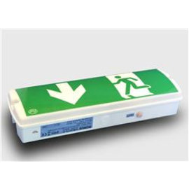 Emergency Light LED opbouw plaf/muur 368x119x90mm