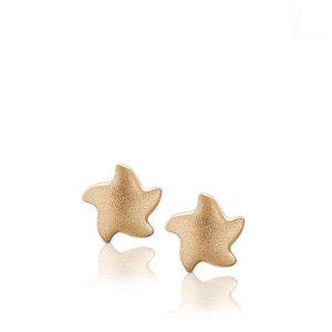 EHS 007 Earrings star