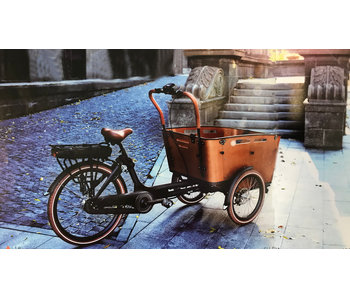 Set zitkussens Chic bakfiets voor Vogue Carry