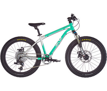 "Early Rider Hellion Trail MTB Hardtail 20"" Kids, brushed aluminum/cyan (2019)"