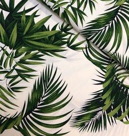 Hoffman Katoen - Palm