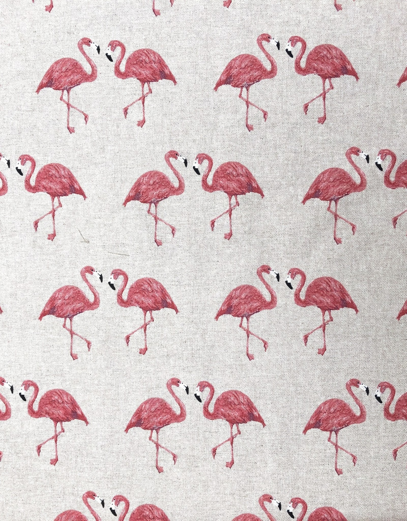 Canvas - Flamingo Spring