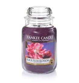 Yankee Candle Black Plum Blossom