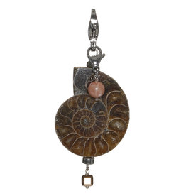 Pimps and Pearls Moesss2Be Style W69 Old World Ammonite Fossil
