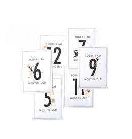 House of Products Milestone kaarten set - Meisjes