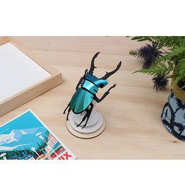 Assembli Papieren 3D Insecten - Vliegend Hert -