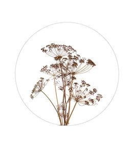 Zoedt Muurcirkel droogbloemen - voor binnen - 30cm