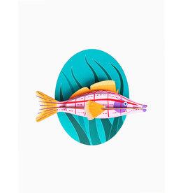 Studio Roof Big Fishes - Longnose Hawkfish