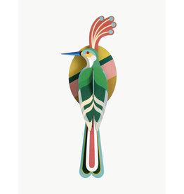 Studio Roof Paradise bird - Nias