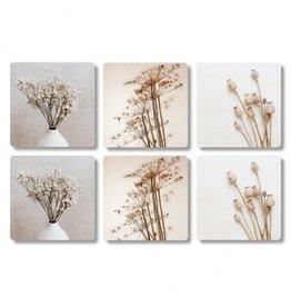 The Big Gifts Onderzetters 6 stuks - Plant/bloem