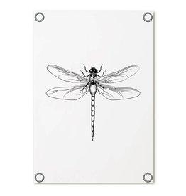 Zoedt Tuinposter wit met libelle| 60x80 cm