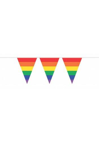 Vlaggenlijn Regenboog - 10 meter
