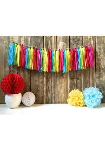 Tassel slinger Multi color - 5 meter