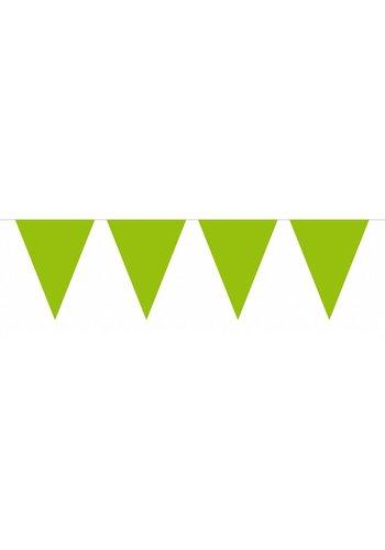 Vlaggenlijn XL Lime Groen - 10 meter