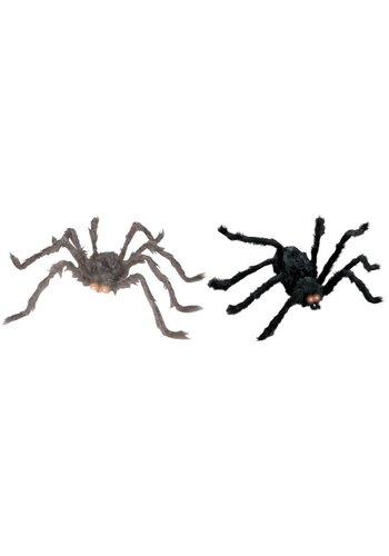 Spin met Lichtgevende ogen - 80x18cm (sale 13,95)